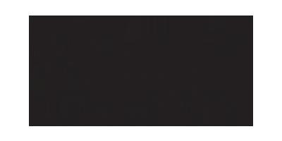 The Sheffield Institute Logo