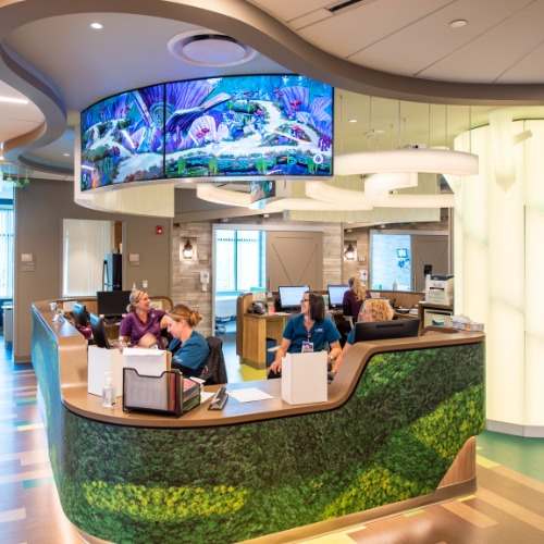 Wilderverse at Connecticut Children's Medical Center credit: Dimensional Innovations